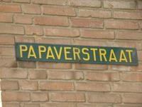 Papaverstraat 2 in Zelhem 7021 ZK