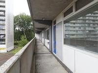 Tjaarda 172 in Drachten 9202 KS
