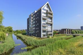Lauwers 12 in Hoofddorp 2134 ZT