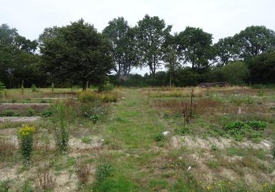 Boterveen 14 A in Dwingeloo 7991 PV