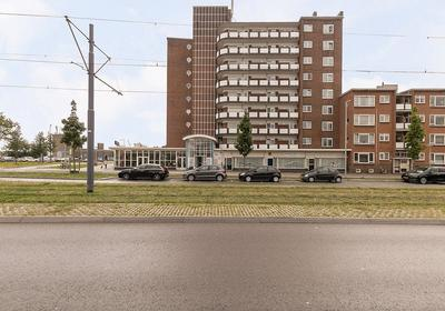 Rotterdamsedijk 171 in Schiedam 3112 AD