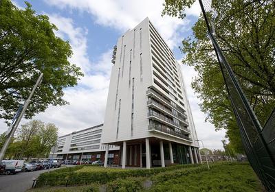 Ringbaan-Zuid 260 in Tilburg 5022 PR