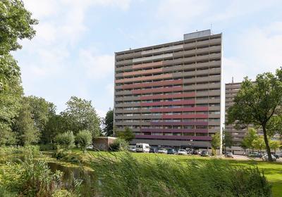 Munt 8 in Heerenveen 8446 AE