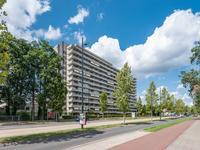 Herman Gorterlaan 173 in Eindhoven 5644 SJ