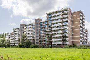 Hammarskjoldlaan 675 in Rijswijk 2286 HT