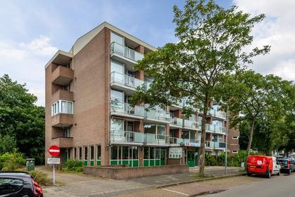Hadewijchstraat 39 in Alkmaar 1813 JG