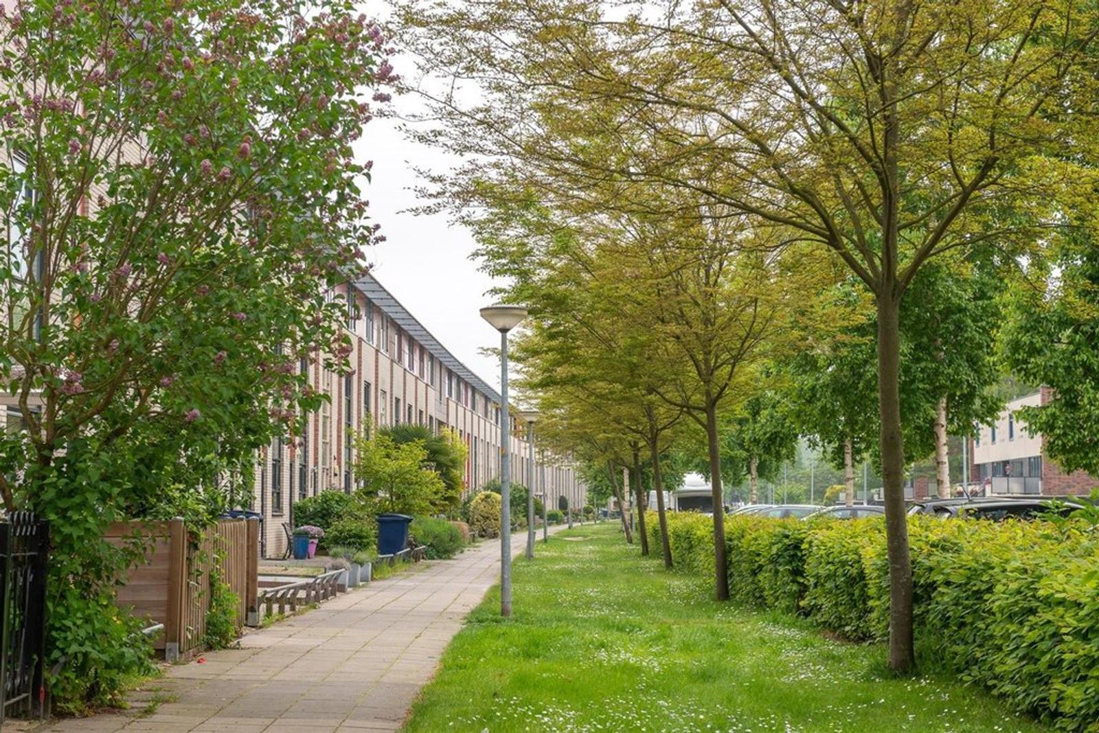 Meindert Hobbemastraat 142