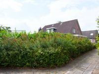 Het Nieveen 9 in Nijeveen 7948 CK