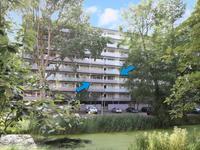 Arendshorst 53 in Leiden 2317 CS