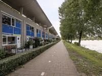 Florazoom 54 in Zoetermeer 2719 HS
