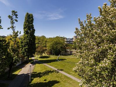 Texel 169 in Utrecht 3524 AT