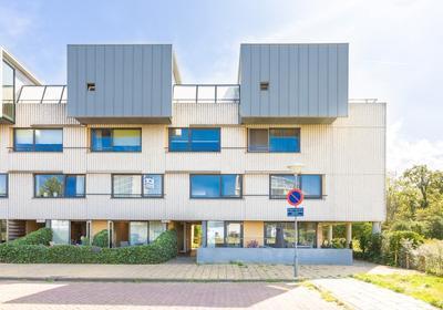 Doorneberglaan 297 in IJmuiden 1974 NK