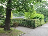 Lage Bergweg 41 54 in Beekbergen 7361 GT