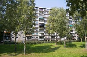 Boerhaavelaan 117 in Oosterhout 4904 KD