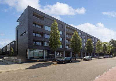 Rijzertlaan 398 in 'S-Hertogenbosch 5223 JV