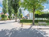 Hendrik Pannecoeckstraat 1 in Hilvarenbeek 5081 JJ