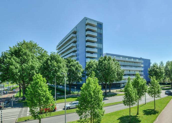 Vijfhagen 47 in Breda 4812 XT