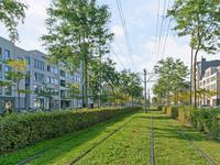 Avenue Carnisse 185 in Barendrecht 2993 MD