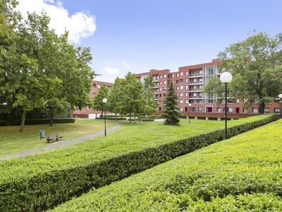 Akerstraat 27 D in Maastricht 6221 CL