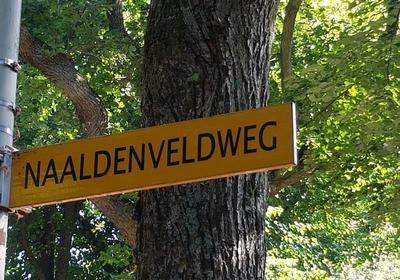 Naaldenveldweg Vrijstaande Villa in Aerdenhout 2111