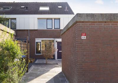 Punter 37 69 in Lelystad 8242 EV