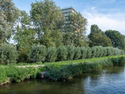 Suze Groenewegstraat 221 in Purmerend 1442 NG