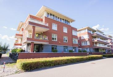 Monta Rosa 45 in Montfoort 3417 GN