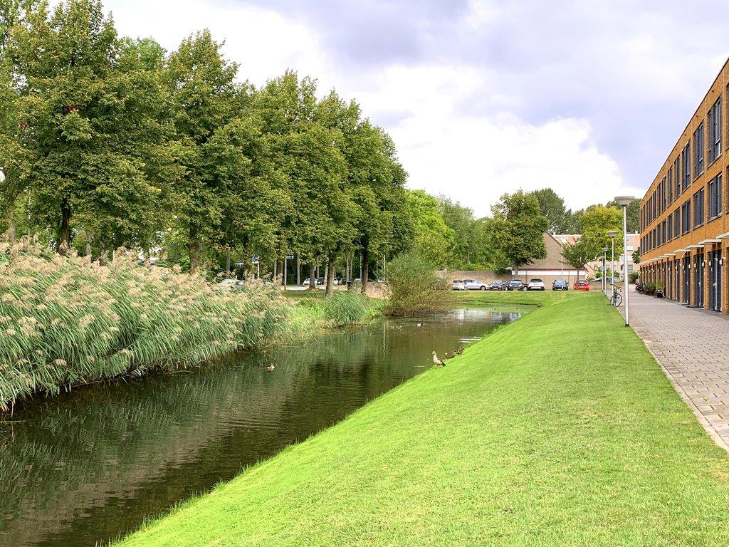 Glenn Millerstraat, Delft