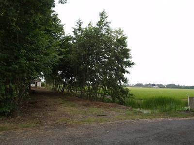 Noorderlaan 38 in Hillegom 2182 GZ