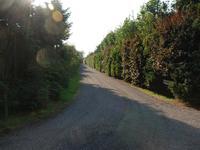 Zevenbergjesweg 27 in Voorthuizen 3781 NV