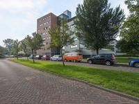 Iepstate 13 in Purmerend 1441 ZV