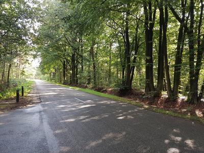 Wijsterseweg 15 39 in Spier 9417 TD