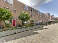 Ringfazant 31 in Nieuwegein 3435 SE