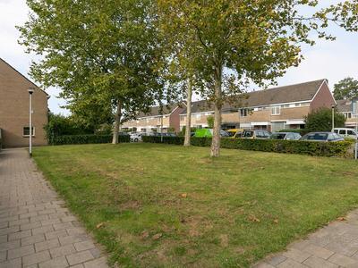 Peppelgaarde 12 in Etten-Leur 4871 TE