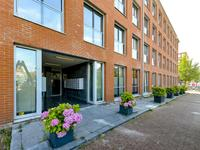 Jacob Burggraafstraat 202 in Amsterdam 1018 WA
