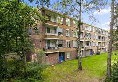 Antonie Van Leeuwenhoeklaan 249 in Soesterberg 3769 XH