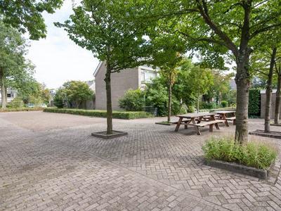Peuleyen 164 in Waddinxveen 2742 EP