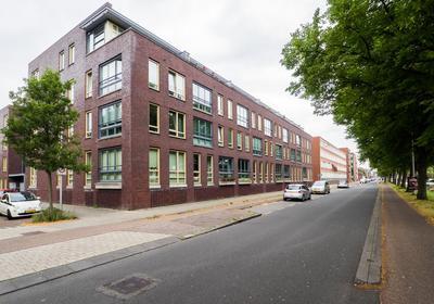 Reitdiepstraat 9 in Utrecht 3522 GG