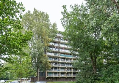 Westervenne 229 in Purmerend 1444 WK