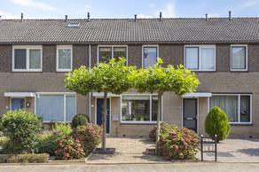Castricumhof 22 in Arnhem 6843 CR