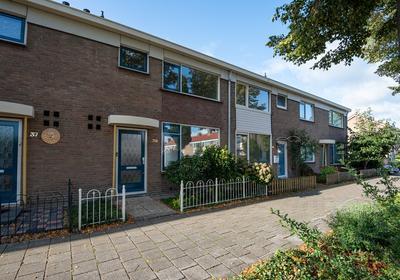 Willem Van Arkellaan 39 in Gorinchem 4205 GV