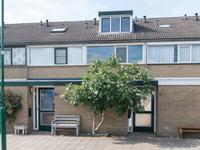 Castor 81 in Veenendaal 3902 SE