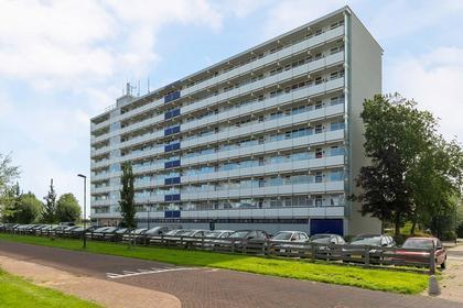 Boudewijnstraat 39 in Bolsward 8701 XR