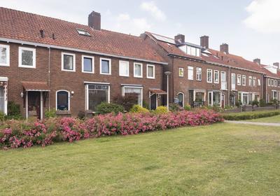 Nimrodstraat 101 in Nijmegen 6531 LD