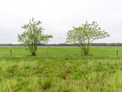 Bergakker (Bouwnummer 25) in Norg 9331 BT