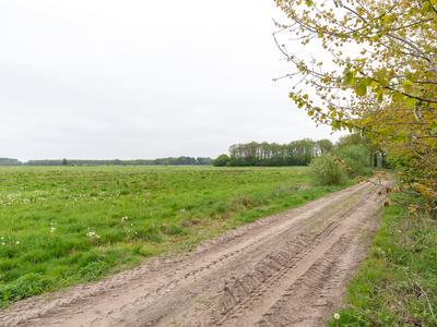 Bergakker (Bouwnummer 31) in Norg 9331 BT