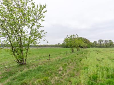 Bergakker (Bouwnummer 20) in Norg 9331 BT
