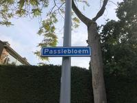 Passiebloem 17 in Rotterdam 3068 AJ