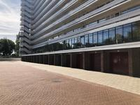 Burgemeester Hogguerstraat 33 in Amsterdam 1064 CK