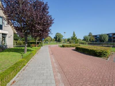 Ridderspoor 7 in Elburg 8081 DR